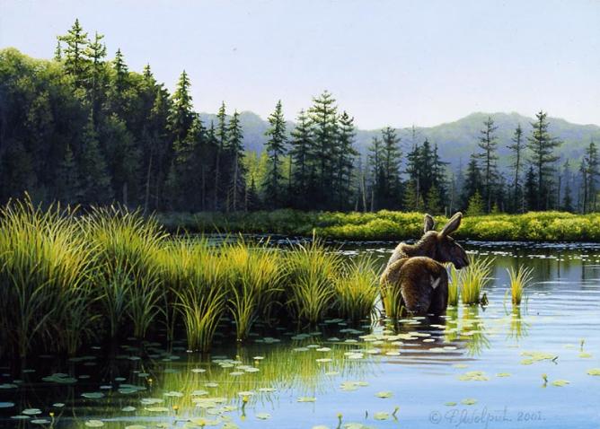 x Bay Lake - 2001