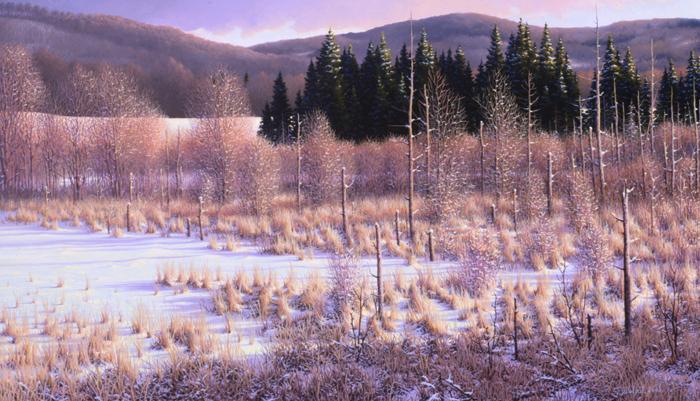 Un hivers coloré - 2005